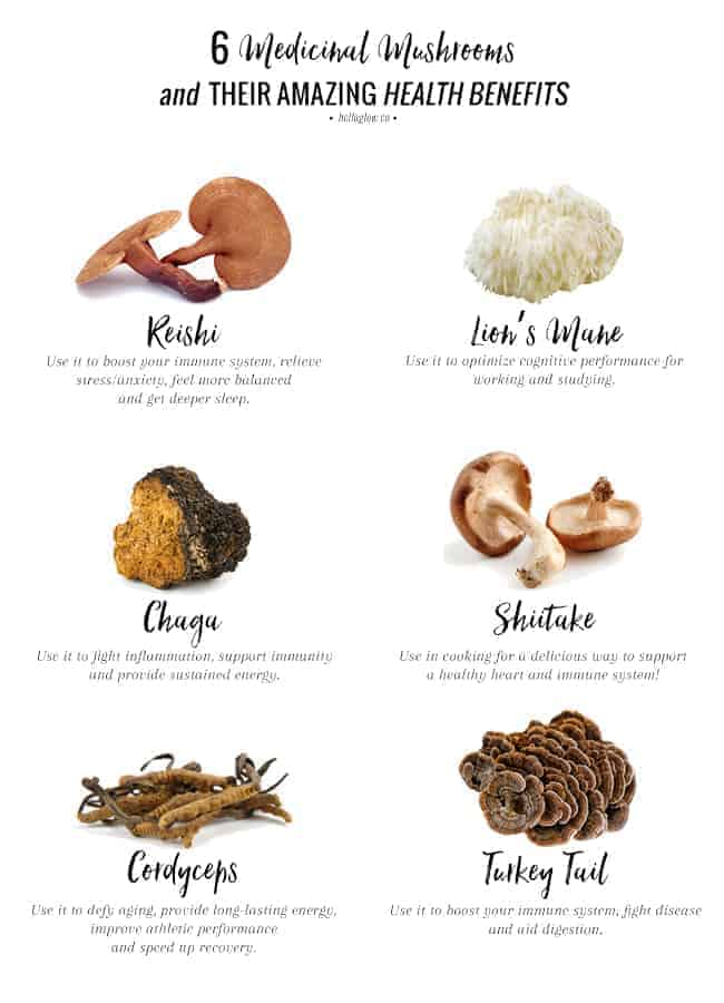 The Benefits of Shiitake Mushroom advise
