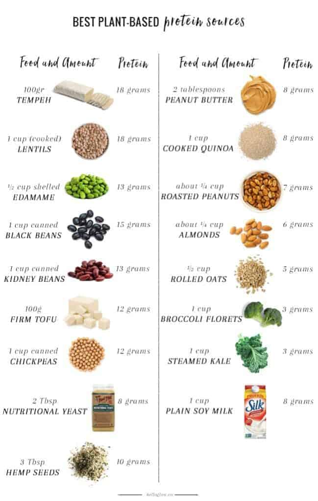 plant based food list pdf