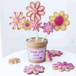 Foodstirs Darling Daisy Cookie Bouquet Kit Giveaway