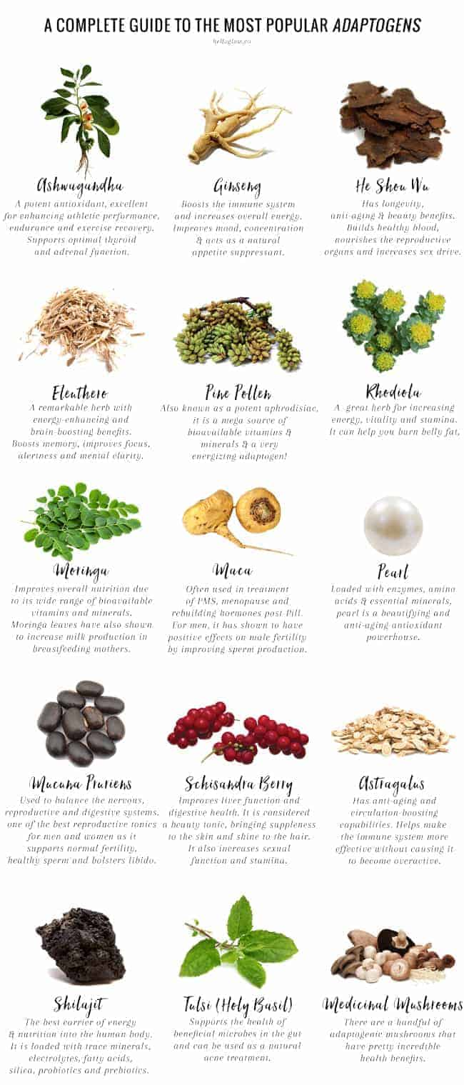 A Holistic Nutritionist Explains What Are Adaptogens