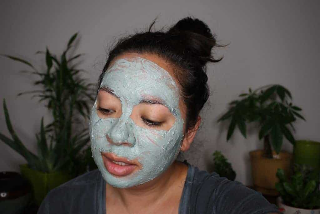 DIY Lush Fresh Face Catastrophe Cosmetic Blueberry Mask from Essential Makeover