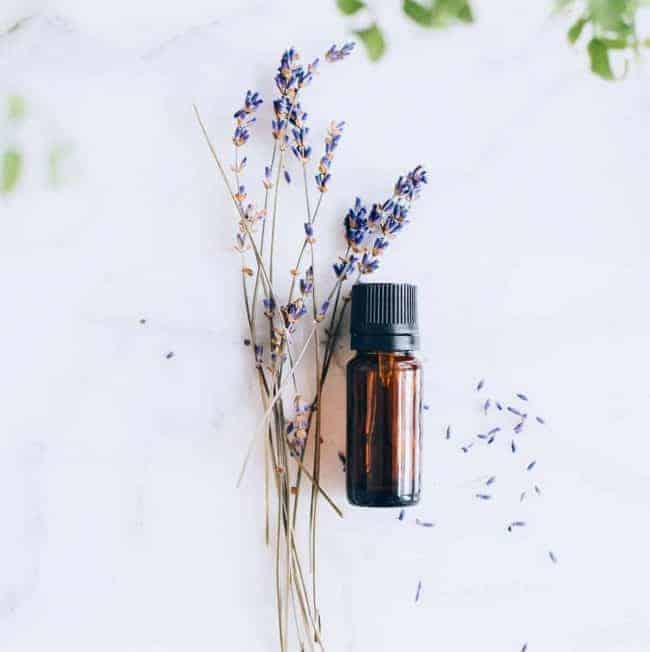 3 Green Cleaning Lavender Oil Uses + Recipes