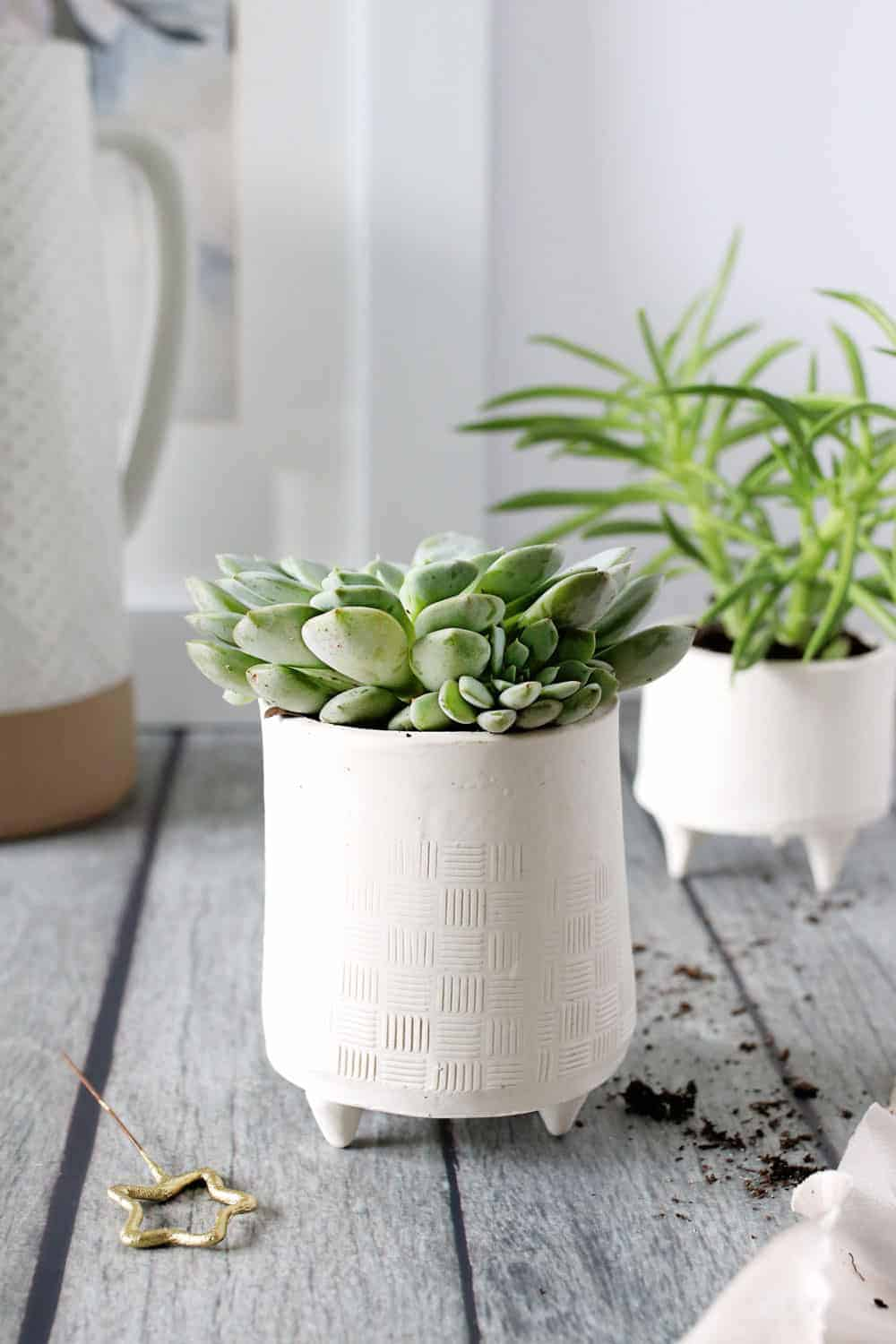 How to Make Your Own Gorgeous, Giftable Succulent Planters