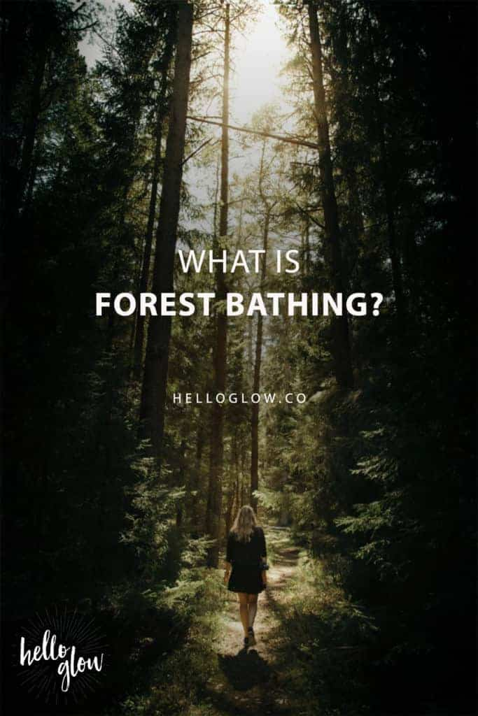 What Is Forest Bathing?