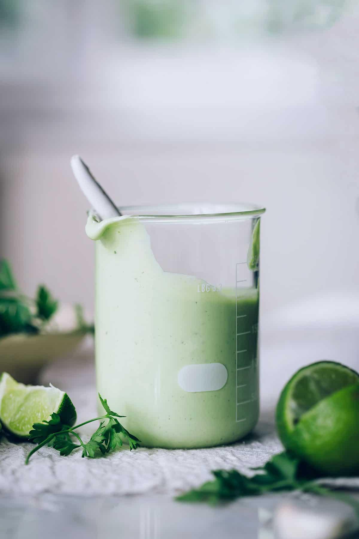 Cilantro Health Benefits + Creamy Cilantro-Jalapeño Sauce