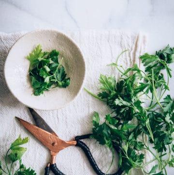 How to use cilantro