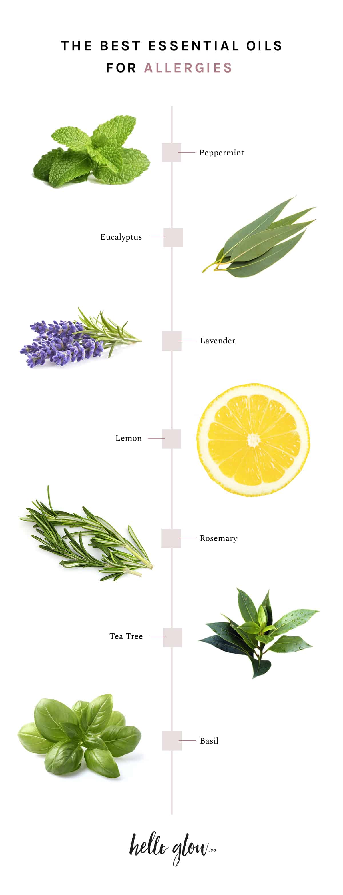 Best essential oils for allergies and how to use them