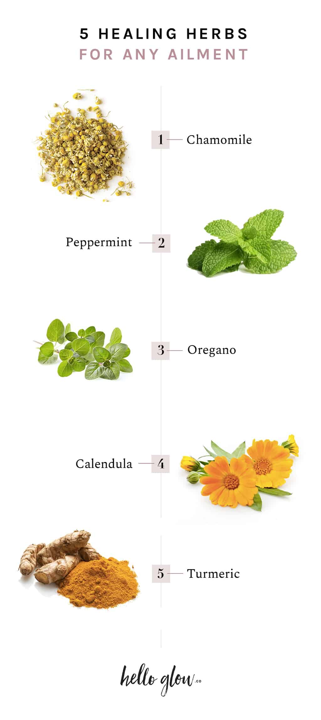 5 Healing Herbs for Any Ailment