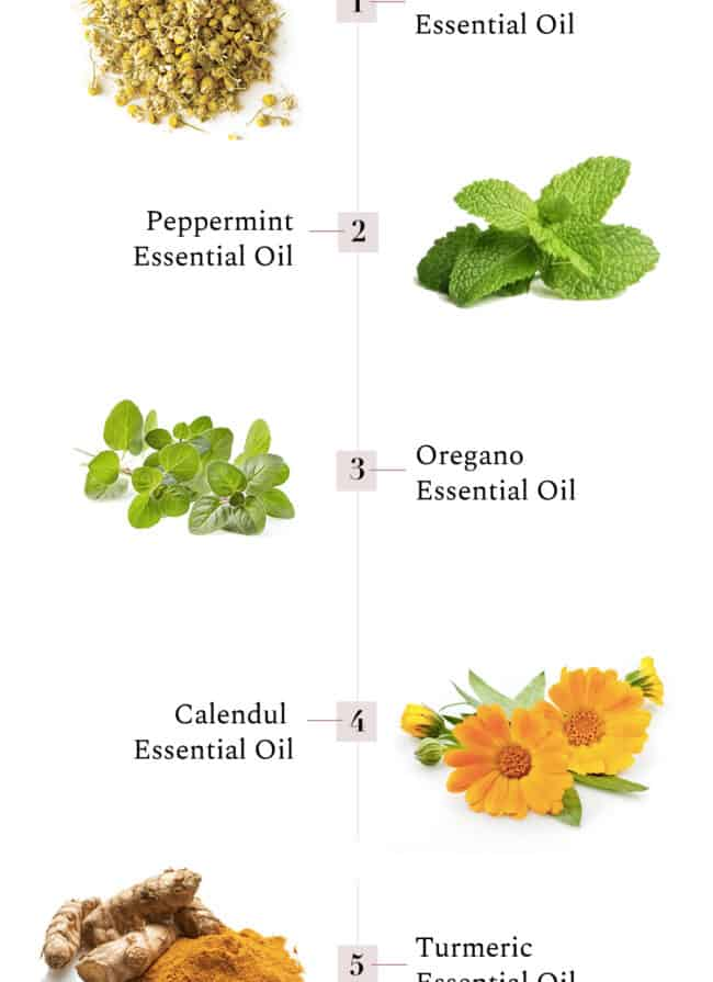 5 Healing Herbs for Any Ailment - HelloGlow.co