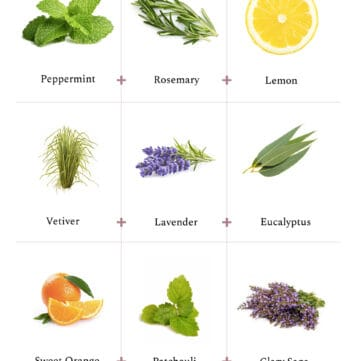 3 Essential Oil Diffuser Blends for Focus and Memory - HelloGlow.co