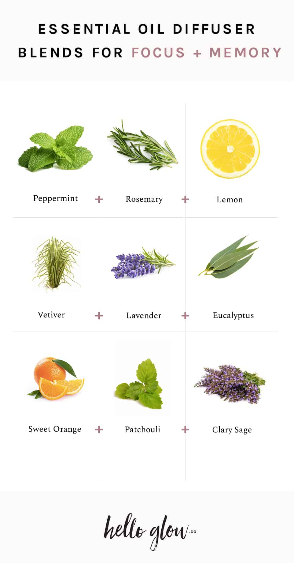 The Best Essential Oils For Focus 3 Diffuser Blends Hello Glow