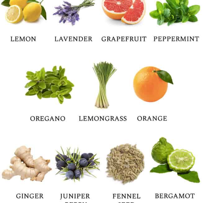 11 Best Essential Oils for Detox - HellolGlow.co