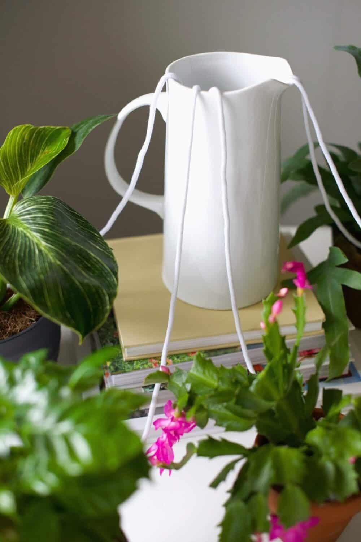 5 Self-Watering Plant Hacks