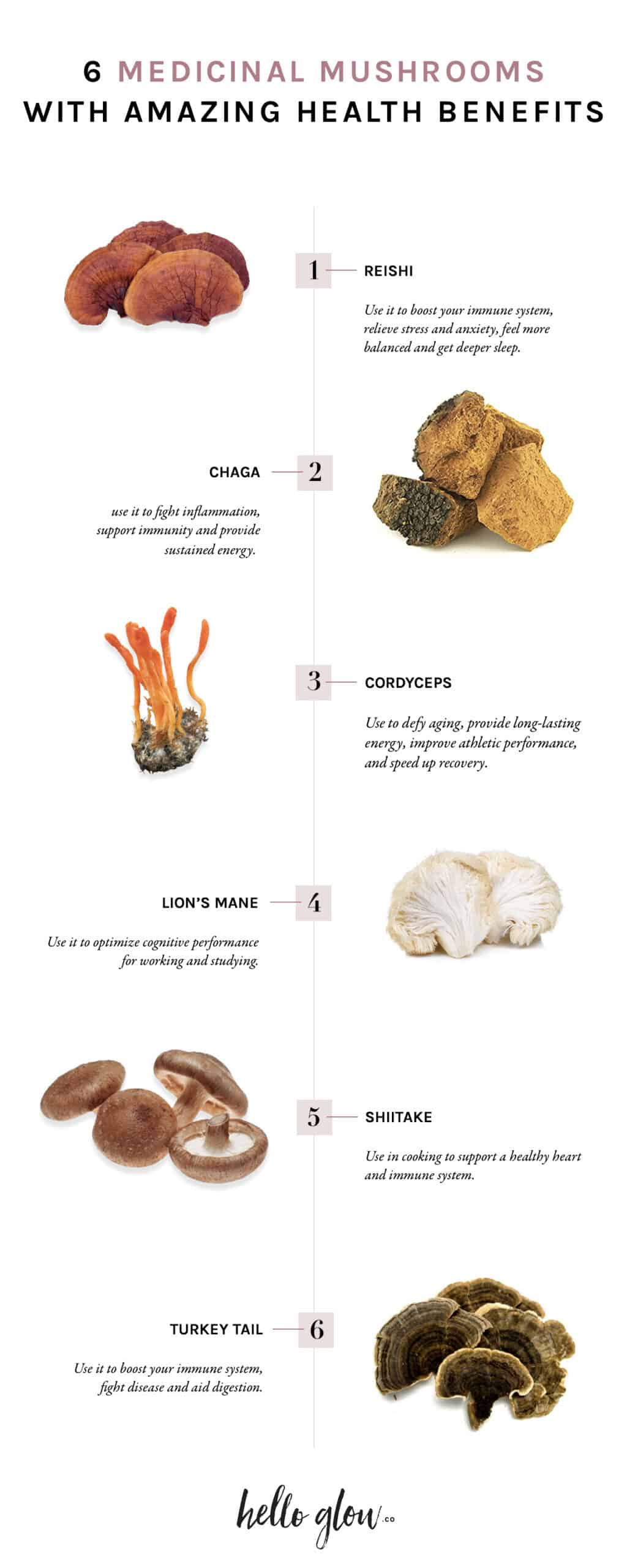 6 Medicinal Mushrooms with Amazing Health Benefits - Hello Glow